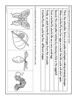 Paragraph Puzzle - April: Butterfly Life Cycle