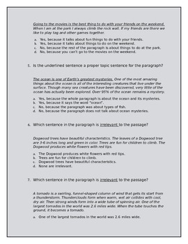 Paragraph Quiz