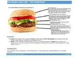 "Paragraph Structure- ""The Tastiest Hamburger"" Worksheet"