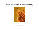 Paragraph and Essay Structure PowerPoint