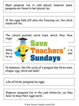Paragraphing activity (Life cycle of penguins) Activity and Information text