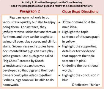 Common Core Aligned Paragraphs and Pigs:  Teaching Paragraph Writing with Humor