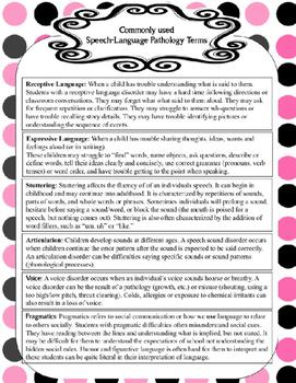 Paraprofessional Paperwork Planner: Editable