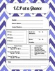 Paraprofessional Planner/Purple and green themed