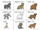 Parent & Baby Animal Matching and Sorting