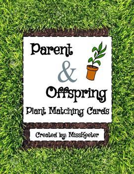 Parent & Offspring Plant Card Matching Sort