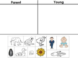 Parent / Young Picture Sort - Life Science