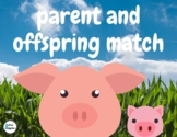 Parent and Offspring Match- An Interactive Book for Studen