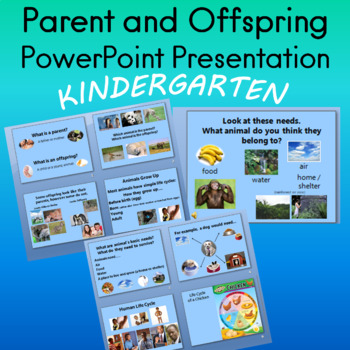 Parent and Offspring PowerPoint Presentations