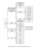 Parliamentary Procedure LDE: Web of Ideas Organizer