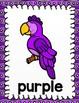 Parrot Color Posters