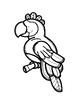Parrot Color Posters & Coloring Page