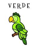Parrot Color Posters & Coloring Page - Spanish/Espanol