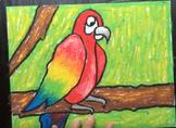 Parrot Oil Pastel Art Project