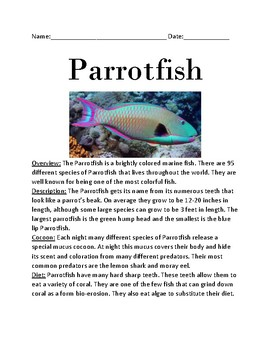 Parrot fish - informational article lesson facts - review questions