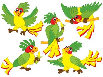 Parrots Clipart - Digital Vector Parrot, Tropical, Bird, Parrots Clip Art