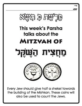 Parshas Ki Sisa - Machatzis Hashekel