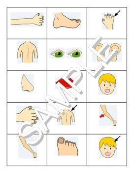 Parts of the Body FOREIGN LANGUAGE Games (Spanish, Italian