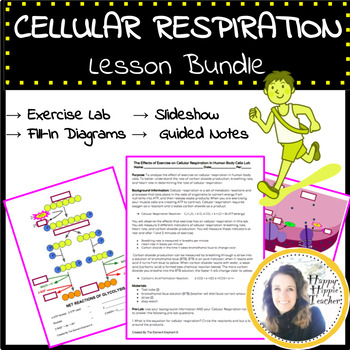 Cellular Respiration Lesson