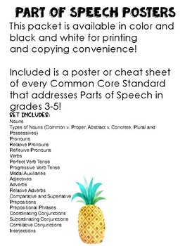 A Complete Set of Part of Speech Posters