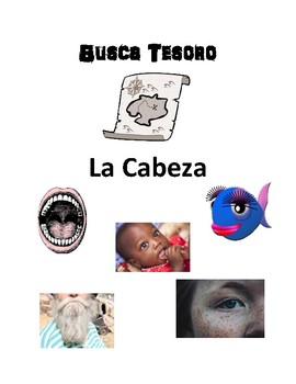 Scaventer Hunt Game: Partes de la cara/cabeza (face and head)