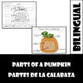 Partes de la calabaza/ parts of a pumpkin