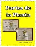 Partes de la planta (Parts of the Plant, Spanish) Plegable
