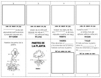 Partes de la planta librito