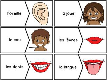Parties du corps - 35 puzzles (casse-tête) - French Body Parts