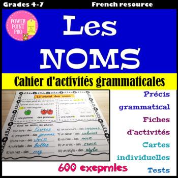 Parties du discours - les NOMS - Activités Grammaticales - 600 exemples