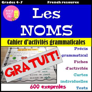 Parties du discours - les NOMS - Activités Grammaticales {FREEBIE}