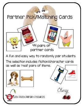 Partner Pairing/Matching Cards