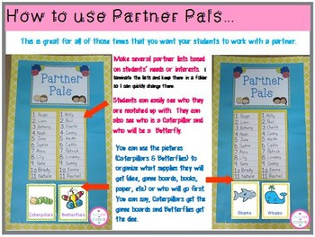 Partner Pals-May & June