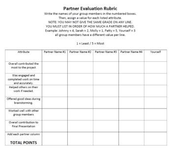 Partner Project Peer Evaluation
