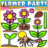 Parts Of A Flower Set 2 Clipart 26 images