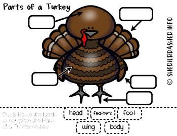 Parts Of A Turkey | English