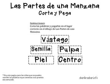 Parts Of An Apple - Spanish
