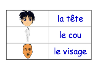 Parts Of The Body in French Flash Cards