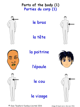 Parts Of The Body in French Matching Activities