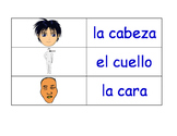 Parts Of The Body in Spanish Flash Cards
