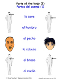 Parts Of The Body in Spanish Matching Activities