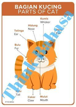Parts of Animals English Indonesian Posters BUNDLE   Bagian Tubuh Binatang