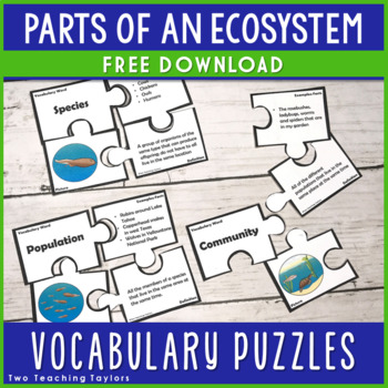 Parts of Ecosystems Vocabulary Puzzles