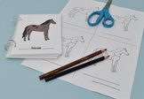 Parts of Horse Coloring Sheets with Control Cards