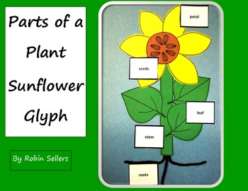 Parts of  Plant Sunflower Glyph