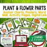 Parts of Plants Anchor Charts, Posters, Word Wall, Activity Pages, Google Link