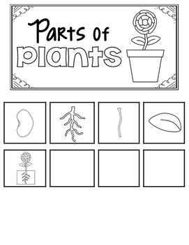 Parts of Plants Tabbers
