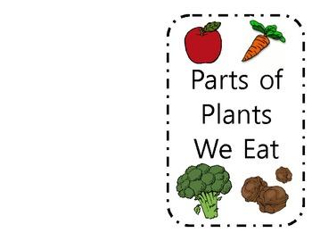 parts of plants we eat booklet by beth banco teachers pay teachers. Black Bedroom Furniture Sets. Home Design Ideas