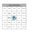 Parts of Speech Bingo Cards