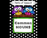 Parts of Speech:  Common Nouns